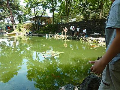 宮沢湖の金魚釣り
