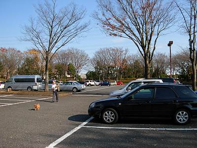 秋留台公園の駐車場