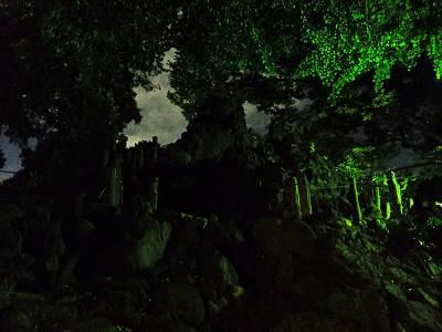 夜見た千駄ヶ谷の富士塚