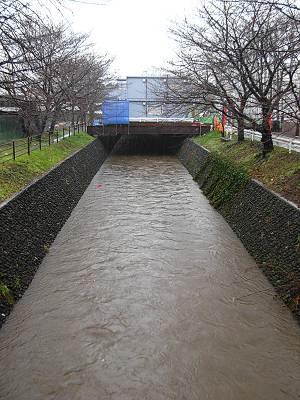東川 加美橋から下流