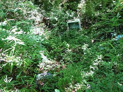 所沢カルチャーパーク近くの森の不法投棄
