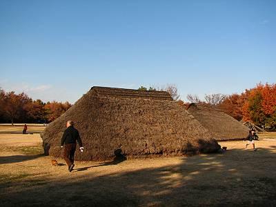 富士見市水子貝塚公園の竪穴式住居