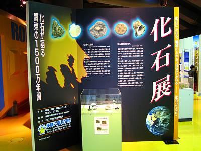 多摩六都科学館 化石展