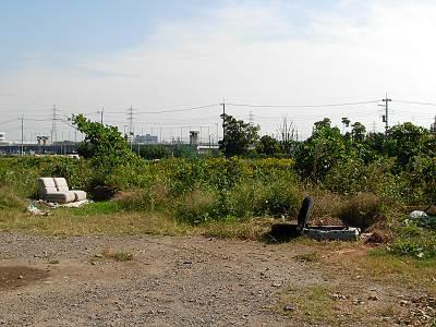 柳瀬川の粗大ゴミ