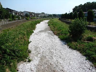 空堀川 栗木橋から下流