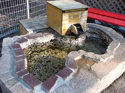 ホテルグリーンプラザ軽井沢 ペットホテルのペット用温泉