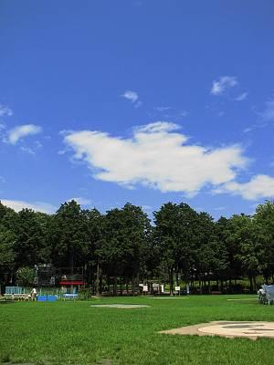 羽村市動物公園の広場