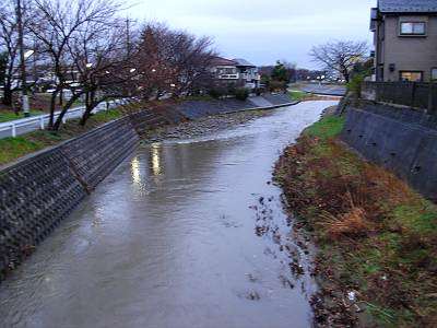 増水した柳瀬川(日向橋から)