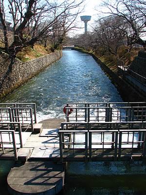 羽村取水堰の第2水門から流れ出る玉川上水
