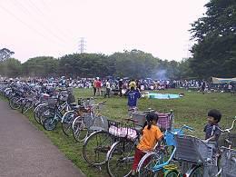 小金井公園ユーカリ広場