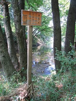 所沢 淵の森