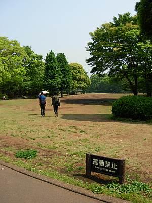 北の丸公園 運動禁止