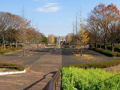 秋留台は航空公園に似てる?