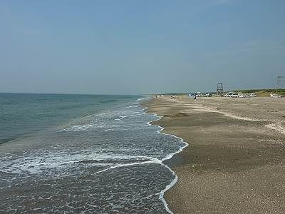 富津岬の海岸