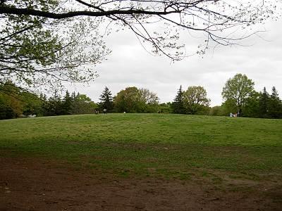 府中の森公園広場