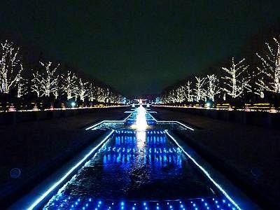 水路ライトアップ