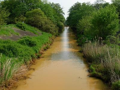 鴨川放水路はまっ茶色