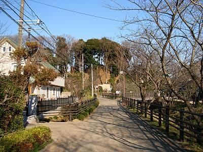 木曽路の富士塚(見沼通船堀東縁から)