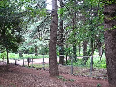 彩の森入間公園と入間基地の間のフェンス