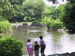 滝の城址公園の池