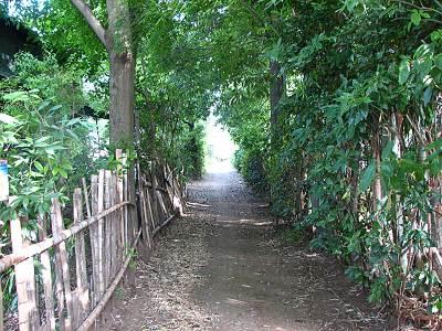 清瀬の畑道の入口