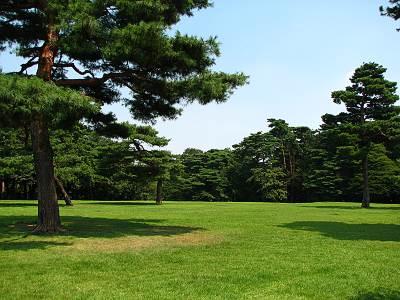 狭山市立博物館の横にある稲荷山公園(ハイドパーク)