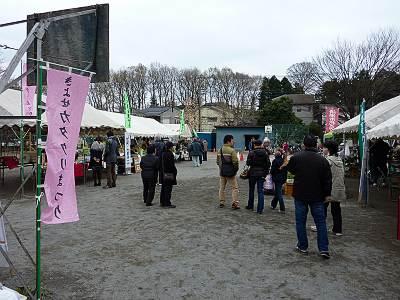 きよせカタクリまつり会場(清瀬第四小学校)