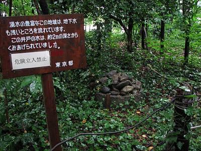 矢川緑地保全地域の井戸