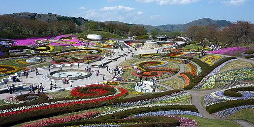 みちのく公園の花