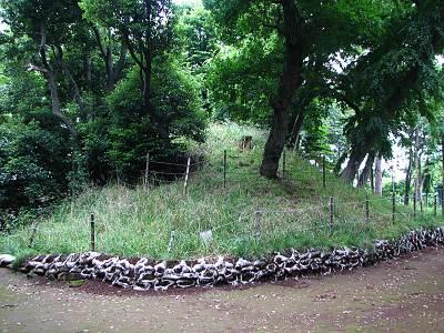 安松神社の境内にある山