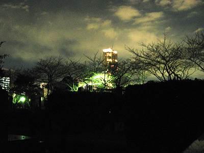 夜の青山霊園(青山墓地)その2