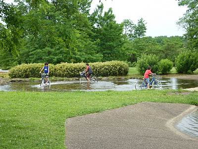 多摩川中央公園の池の中で自転車