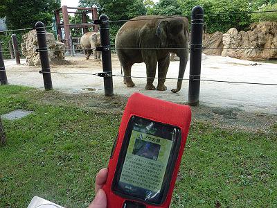 携帯端末を使った動物情報サービス