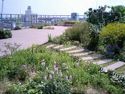 あんさんぶる荻窪の屋上庭園