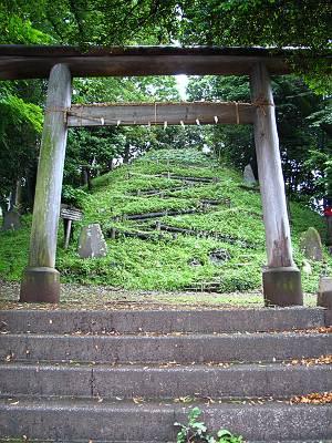 鳥居の向こうに見える中里富士