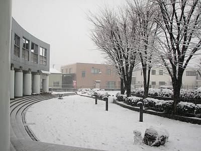 雪景色の所沢市立松井公民館