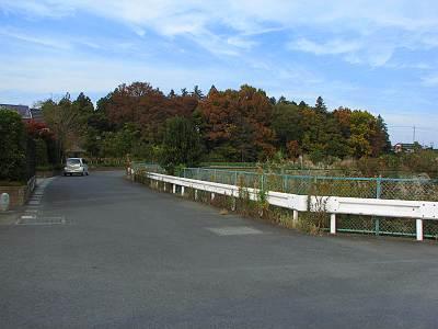谷田の泉のある森