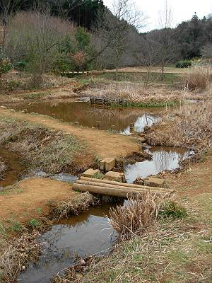 西久保湿地