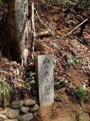 城山神社の血の出る松の跡