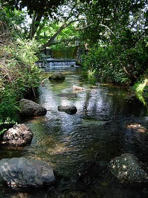 南沢緑地の南沢浄水場から出てくる湧水