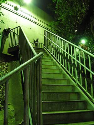 愛宕トンネル横の階段