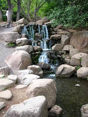 航空記念公園むさしの川の源流