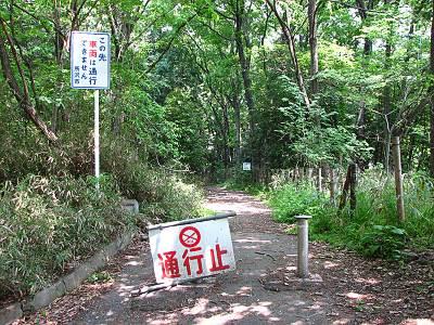 早稲田大学敷地内の湿地への降り口
