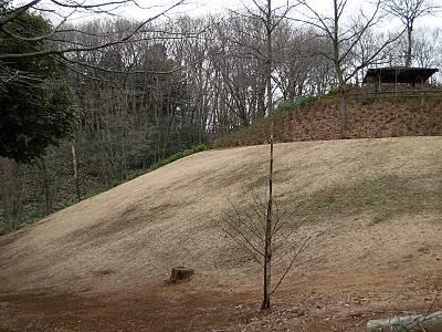 東大和市立狭山緑地の良い感じの傾斜