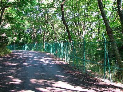 狭山湖外周道路