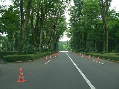 武蔵陵墓地への道路