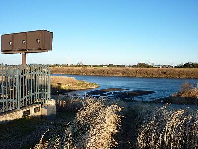 庄和排水機場から見た江戸川