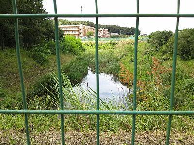 日比田水路の調節池