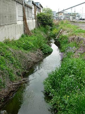 ヤマザキパン工場前あたりの坂ノ下川