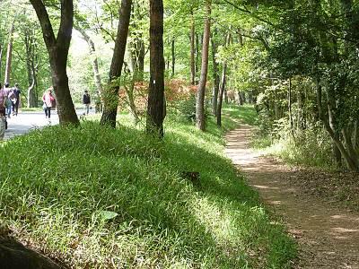 森林公園の古鎌倉街道